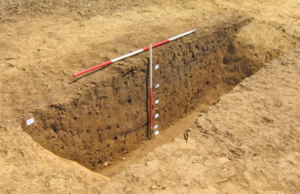 Section through one of the ditches of the Long Enclosure showing traces of burning and charcoal interleaved with the sediment infill