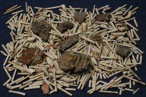 Some of the many clay tobacco pipes recovered from the Cabot Circus excavations, including fragments of 'muffle' from a pipe manufacturer's kiln
