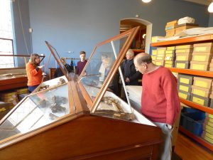 volunteers-exploring-stroud-museum