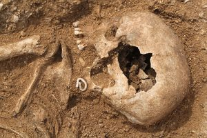 excavated female skull showing remains of a copper object