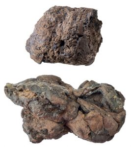 Mineralised poo and saponified fat