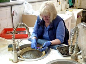 Sue washing human remains from a recently excavated Roman cemetery site