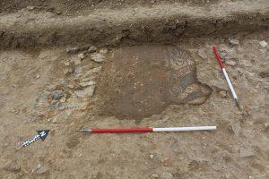 mosaic part revealed