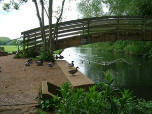 River Lark at Mildenhall at present
