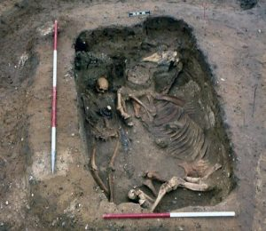 The early Anglo-Saxon 'horse and rider' burial from RAF Lakenheath, Suffolk