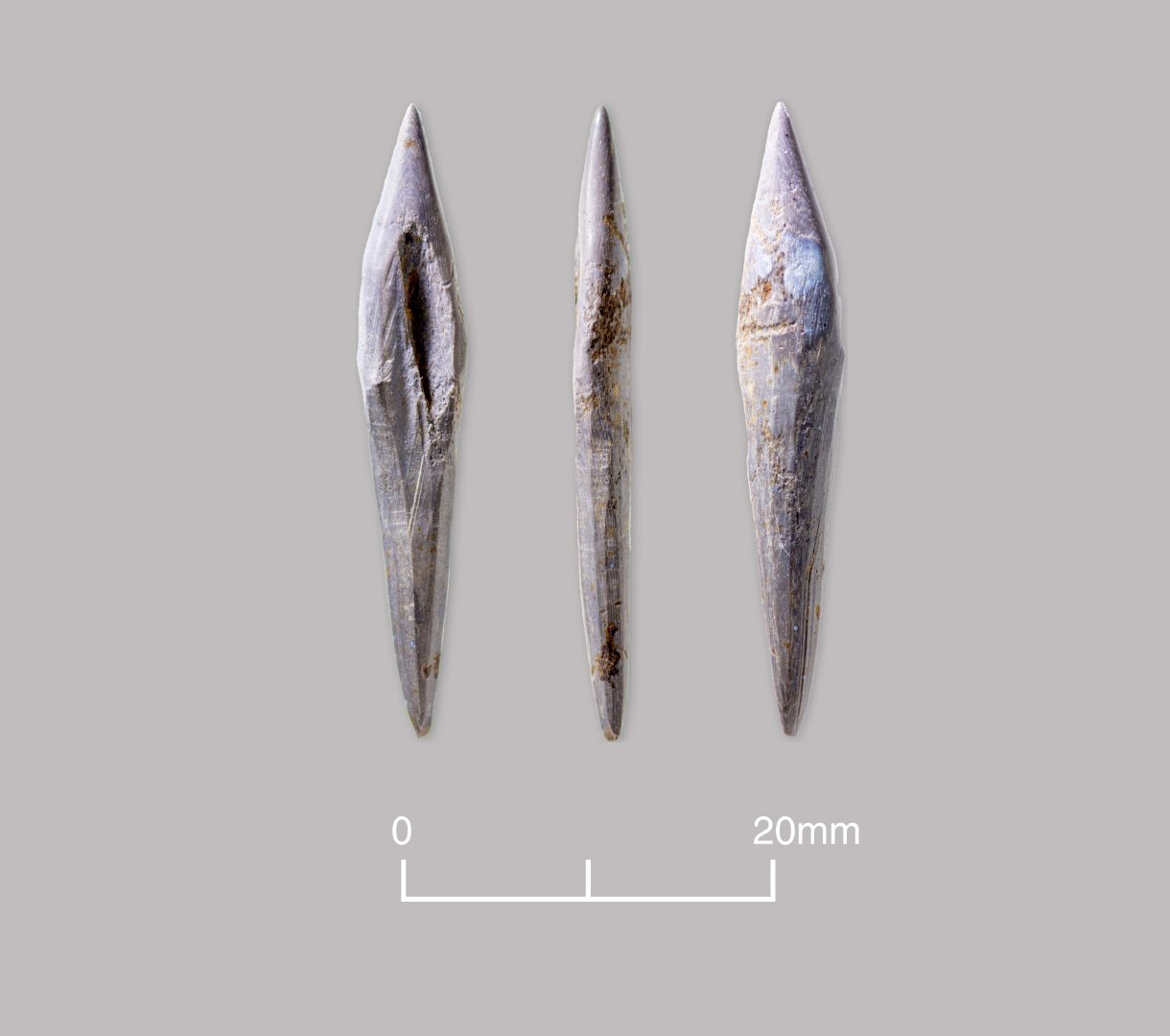 Splinter of bone sharpened to point and polished from use. Probably an awl or piercing tool. Late Bronze Age to Early Iron Age (c. 1000–600 BC)