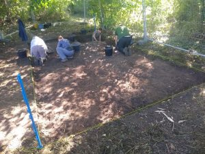 Excavation of trench 11 in the woods